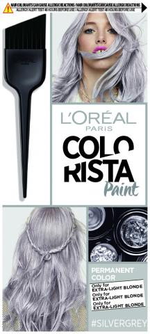 Colorista PAINT (Grey)